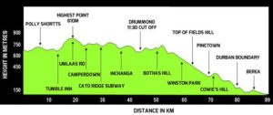 Comrades elevation profile