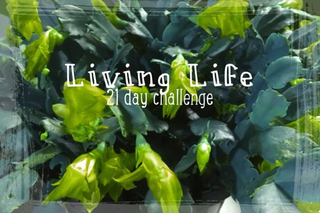 living life 21-day challenge pic